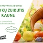 Velykų zuikutis Kaune 2018 04 02